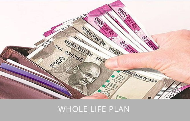 Whole-Life-Insurance-Policy